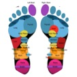 Button to take you to Jacksfeet Reflexology Treatments page
